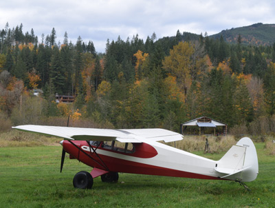 Piper Family Cruiser